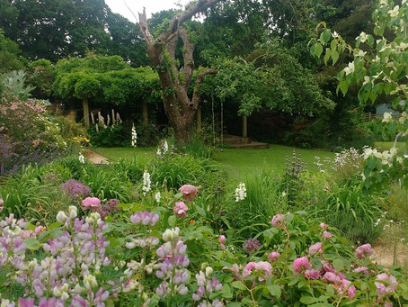 4 Waterworks Cottages NGS Charity Opening June 2019
