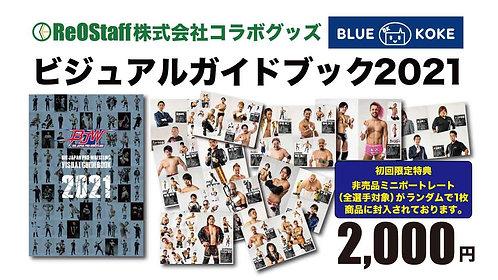 BJW Visual guidebook