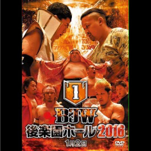"Big Japan Prowrestling in Korakuen Hall  DVD-R ""1th 2016.January 2"" (0.2kg)"