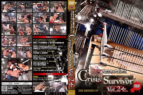 Crisis Survivor・Vol.2+