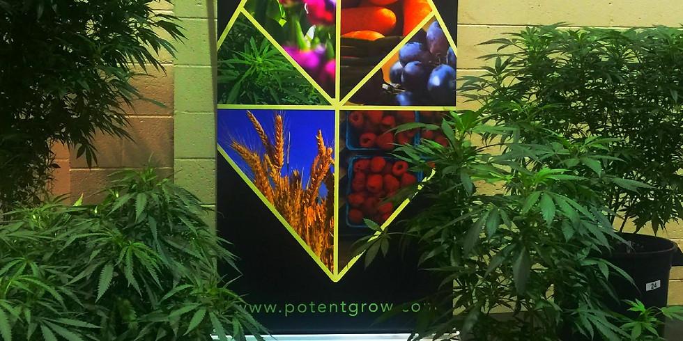 Cannabis and CBD Hemp Planting Class