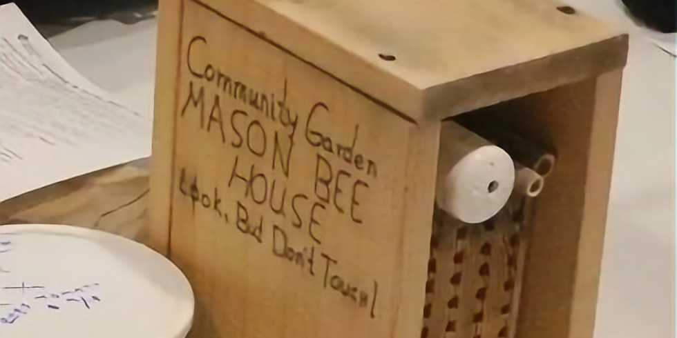 Linn County Master Gardener - Mason Bee Cocoon Care Class