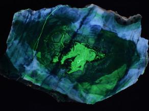 Tiffany Stone, Delta, Utah