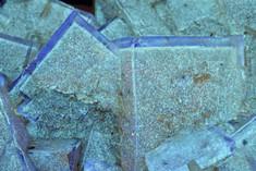 Fluorite with Hydrocarbon Inclusions, Minerva No. 1 Mine, Cave-In-Rock, Illinois