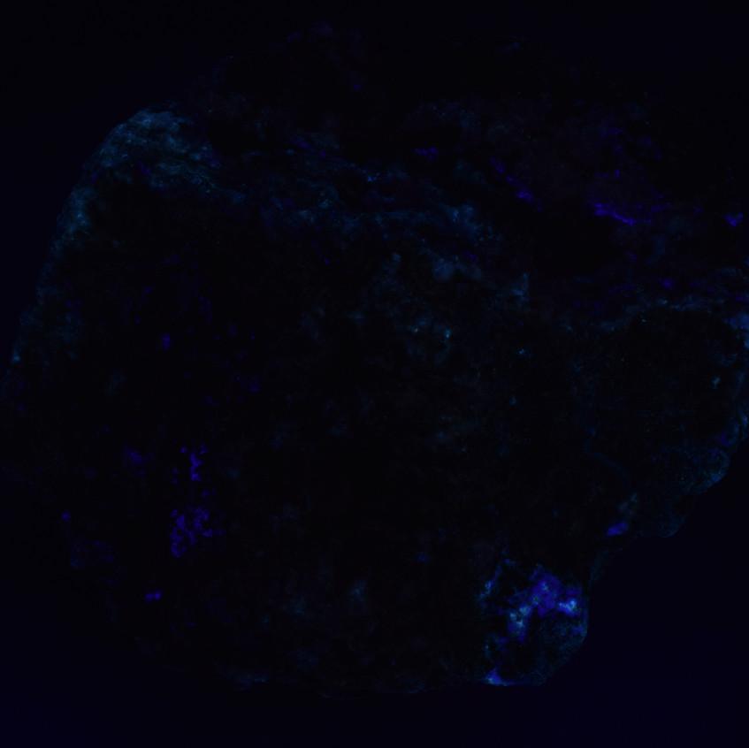 Long Wave UV (365nm)