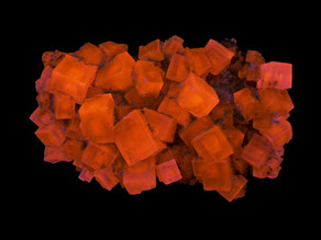 Fluorescent Halite, Detroit Salt Company Mine, Detroit, Michigan