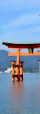 voyage de noces au Japon.jpg