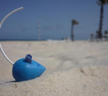 plage tunisienne de port el kantaoui.jpg