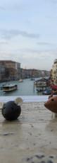 Balade dans Venise.JPG