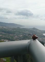 Madre Funchal 2 FILEminimizer.JPG