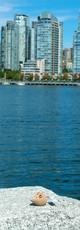 Vue_depuis_Granville_Island_à_Vancouver_