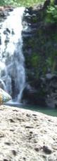 Chutes de Waimea_Oahu_Hawaii FILEminimiz