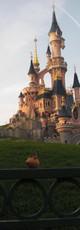 Souris-Disney Paris.JPG