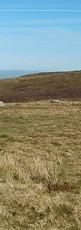 région_de_Penmaenmawr,_Pays_de_Galles.VI