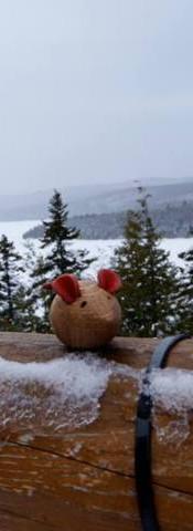 Souris-Lac sacacomie Canada II FILEminim
