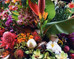 Tropical Evolution: A Cornucopia of Thai Fruits & Flowers