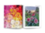 Kosmos_Bloemen Boek Binnenwerk7.jpg