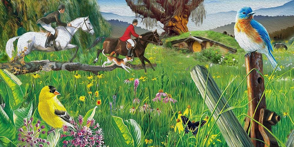 Willow Pond Farm Equestrian Horse Boarding Eugene Corvallis