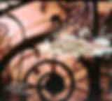 ELOQUENTIA - HAYDN.jpg
