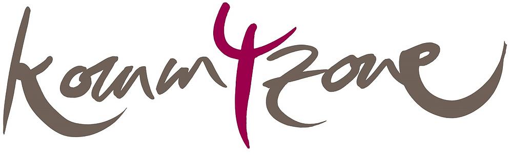 Komm4zone Logo ohne wohlfuehlen 1.png