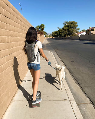 jogging with my Jindo Puppy