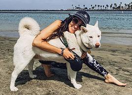 love my jindo mochi ocean beach dog