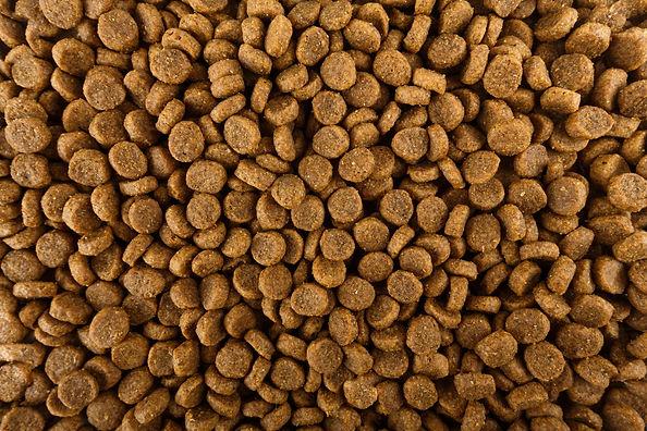 dog-food-kibble-love-my-jindo-min.jpg