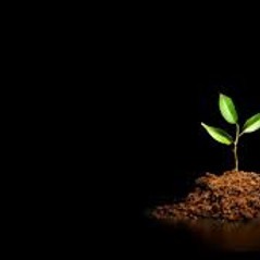 Christian Growth Seminar