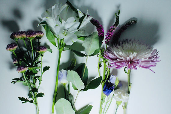 Flowers for watercolour workshop