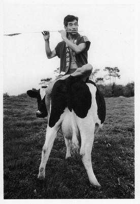 Année de la vache