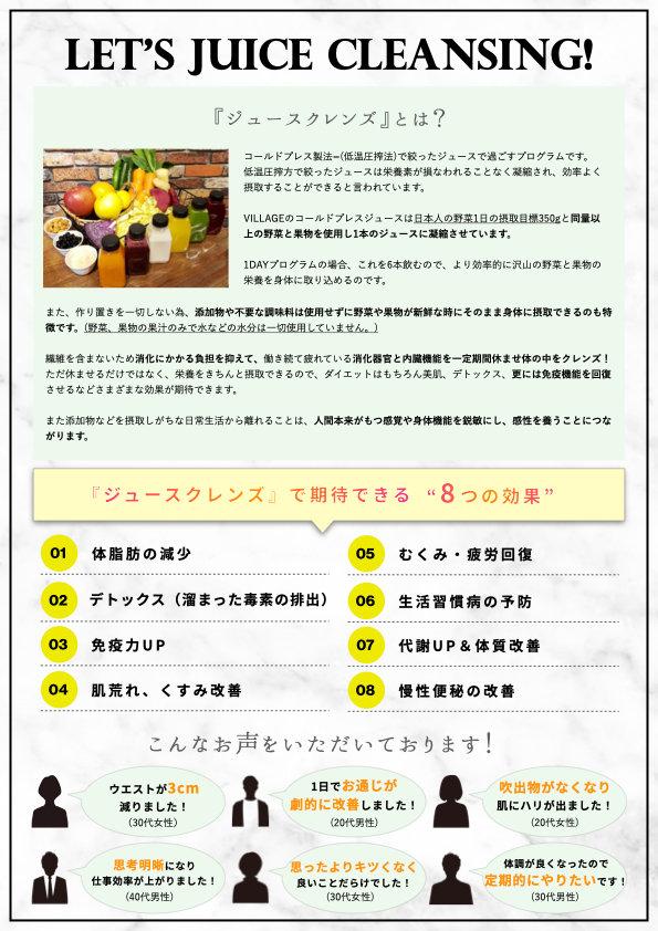 CLEANSE BOOK &チラシ合体版(サイト用) .002.jpeg