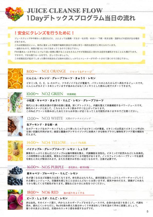 CLEANSE BOOK &チラシ合体版(サイト用) .005.jpeg