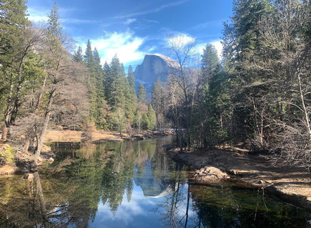 1月のポカポカなヨセミテ国立公園