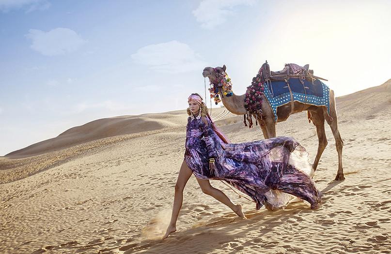 camel 2 LR.jpeg