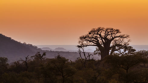 Landscape - Baobab ridges.jpg