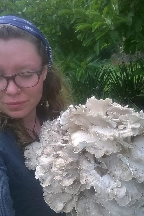 Low-tech Mushroom Gardening | Roxanne Hanna