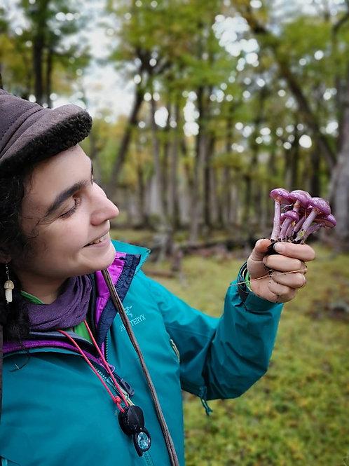 MM 2020 Keynote: Women in Mycology   Giuliana Furci