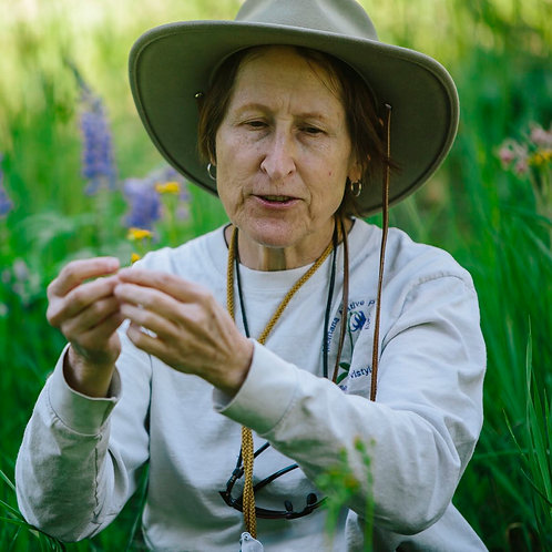 Knowing the Plants Around Us with Robyn Klein