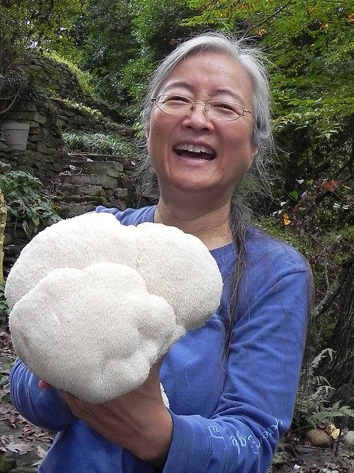 Mushrooms for Health & Healing in Clinical Practice   Cornelia Cho