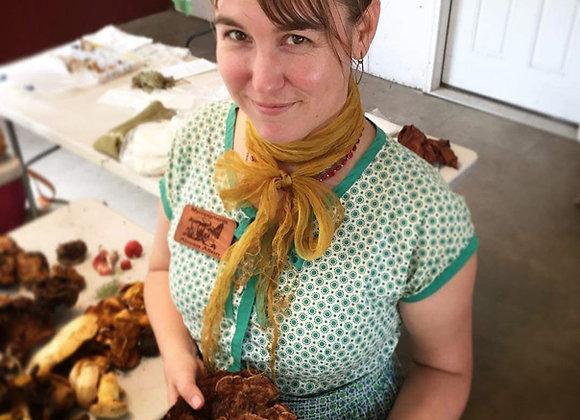 Mycopigments - Dyeing Fibers with Mushrooms   Alissa Allen