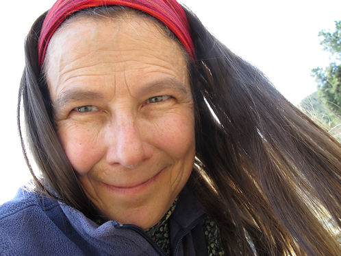 Using Energetics in Herbal Formulation & Therapeutics   Lisa Ganora
