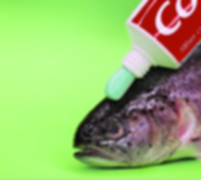 9 (Toothpaste Fish).png
