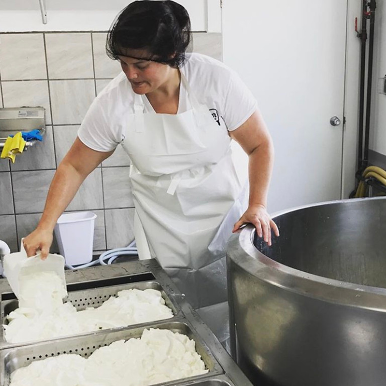 Making Aged Sheep Milk Cheese