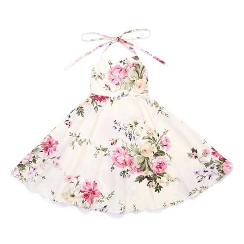 Prairie Meadow Dress