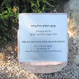 מוזיאון ישראל - חורשה לזכרה של ז'קלין וייל