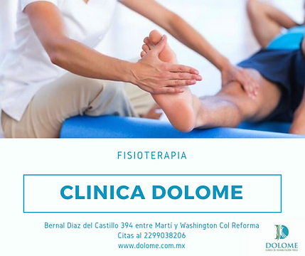 fisioterapia (1).png