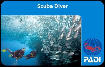 scuba-diver_edited.jpg