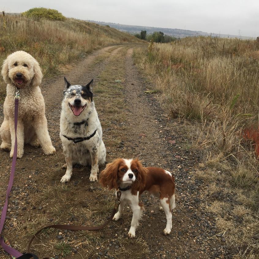 Zoey, Isaac, Zoe
