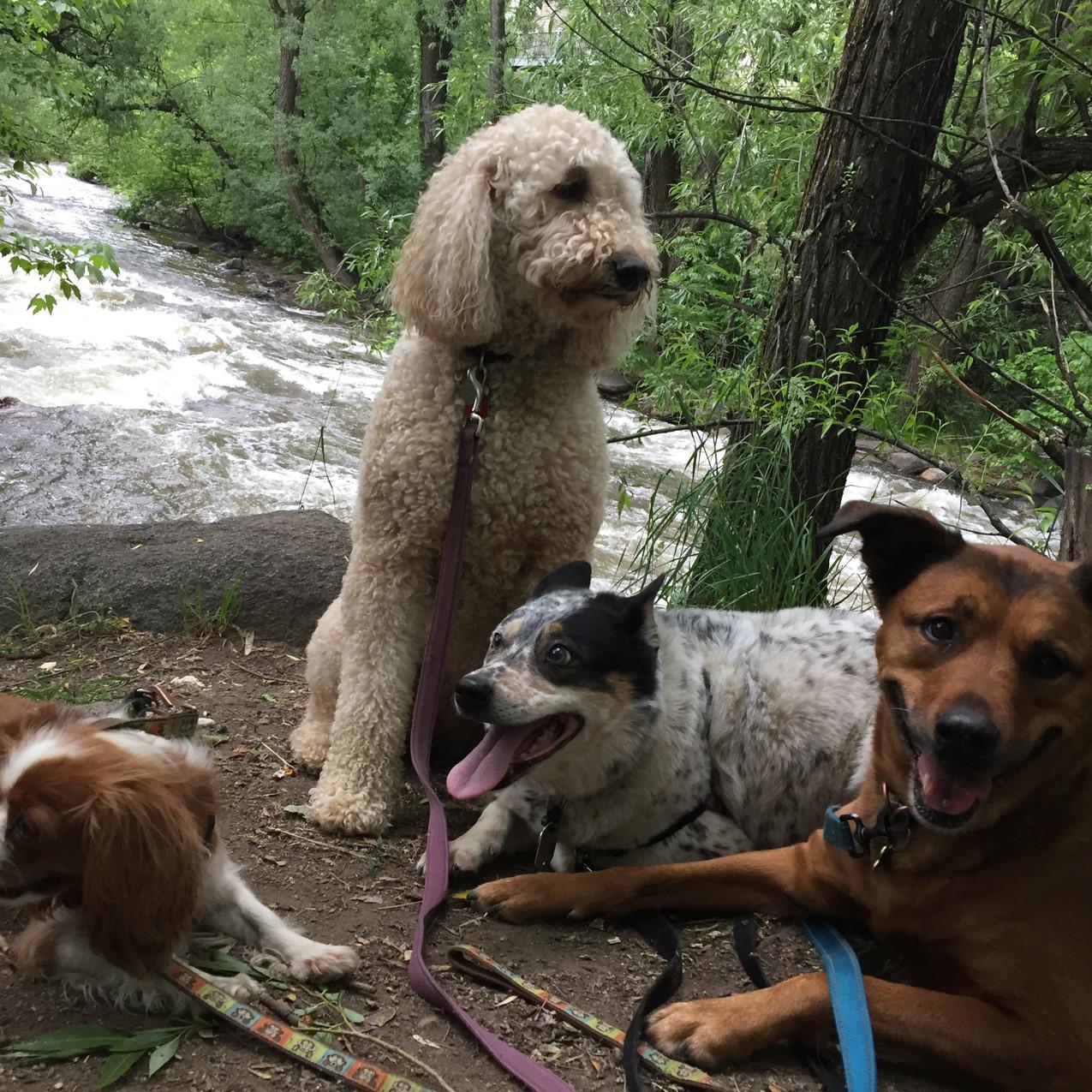 Zoe, Zoey, Isaac, Ruby
