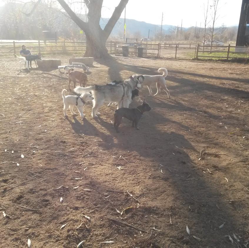 T, Ruffers, Zoey, Isaac, friends